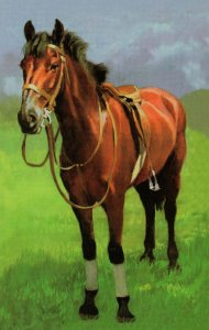 1970s Horse Saddle Painting Ladybird Childrens Book Painting Postcard