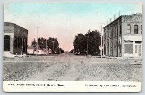 Sacred Heart Minnesota~Dirt West Maple Street~Building Faces Corner 1910 Bluesky