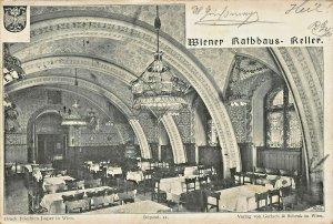 WIEN VIENNA AUSTRIA~WIENER RATHHAUS KELLER~1900 POSTCARD