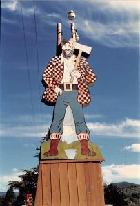 Camera Photograph - Lumberjack