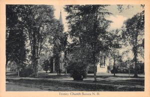Trinity Church, Sussex, New Brunswick, Canada, Early Postcard, Unused