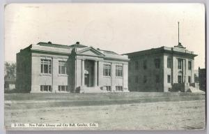 Greeley CO Public Library City Hall 1911 Vintage Postcard