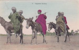 Egyptian Donkey, 1911