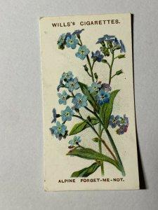 CIGARETTE CARD - WILLS ALPINE FLOWERS #21 ALPINE FORGET ME NOT  (UU333)