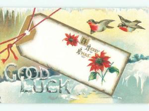 Divided-Back CHRISTMAS BIRDS SCENE Pretty Postcard W8539
