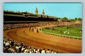 Louisville KY-Kentucky, Churchill Downs, Kentucky Derby, Chrome Postcard