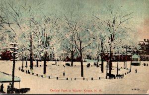 New Hampshire Keene Central Park In Winter