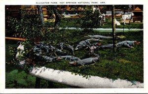 Arkansas Hot Springs Scene At The Alligator Farm