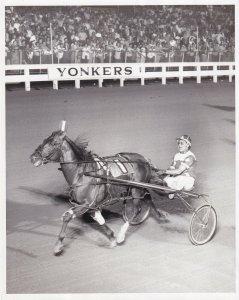 YONKERS RACEWAY, Marvin Hanover Wins Harness Horse Race