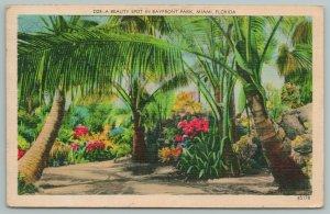 Miami Florida~Palm Tree Beauty Spot In Bayfront Hotel~Vintage Postcard