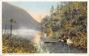 Profile Lake~White Mountains New Hampshire~Canoe Wedged~#12513 Detroit Pub Co