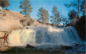 Snake River Falls Valentine Nebraska NE Postcard