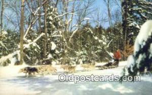 Lake Placid, NY USA Ski, Skiing Postcard Post Card Old Vintage Antique  Lake ...