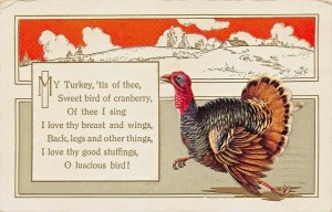 MY TURKEY TIS OF THEE-SWEET BIRD OF CRANBERRY-THEE I SING~THANKSGIVING POSTCARD