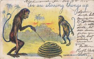 Monkeys poke stick at snake We are stirring things up. , PU-1905