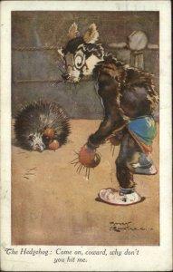 fantasy Hedgehog & Wolf or Fox Boxing Match ROUNTREE c1920 Postcard