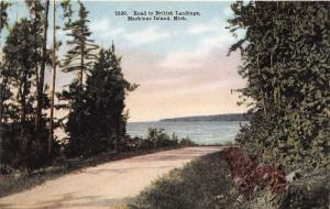 Mackinac Island Michigan~Road along Lake to British Landings~c1910 Postcard