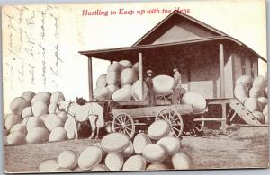Hustling to Keep Up with the Hens Eggs Exaggeration Vintage Postcard K13