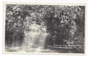 RPPC FL Silver Springs Beauty Spot Real Photo Postcard