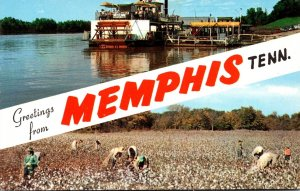 Tennessee Memphis Greetings Showing Cotton Picking Scebe & The Memphis Belle II