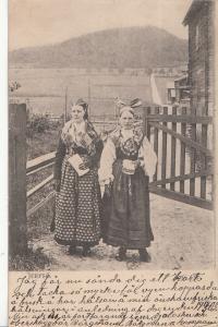 Gävleborg County Swedish types women folk costumes Järvsö Parish 1900s postcard
