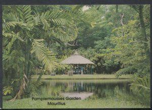 Mauritius Postcard - Botanical Garden of Pamplemousses T7043