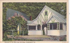 Pennsylvania Coudersport Entrance To Ice Mine and Gift Shop Curteich