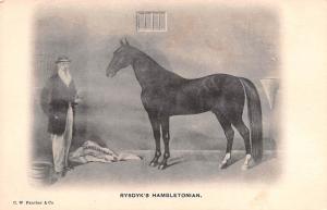 Circus Post Card, Old Vintage Antique Postcard Rysdyk's Hambletonian Unused