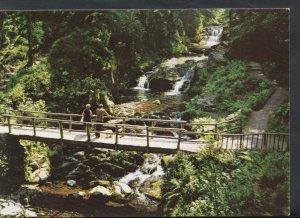 Devon Postcard - Lynmouth - Watersmeet   T1211