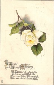 Beautiful white  rose. Easter Message TuckEaster Series PC #3640