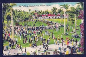 Horse Paddock Hialeah Park Miami Florida used c1948