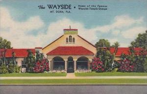 Florida Mount Dora The Wayside