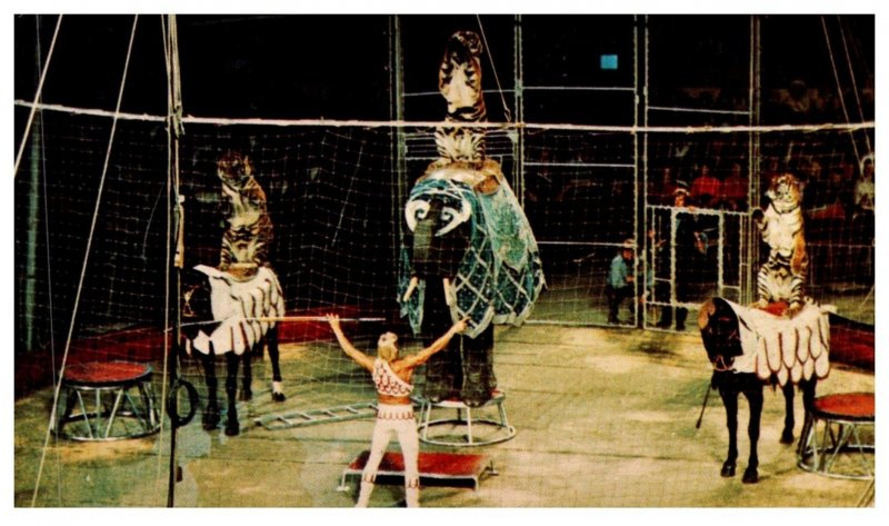 Ringling Bros.   Acclaimed Animal Master , Gunther Gebel-Williams