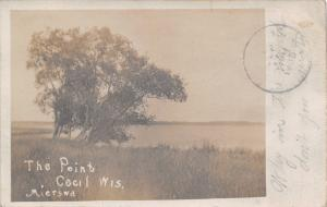 Cecil Wisconsin~The Point~Trees Bend Down into Lake Shawano~1906 RPPC