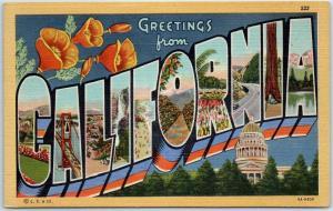 California Large Letter Postcard w/ State Capitol & Flower Poppy Linen Unused