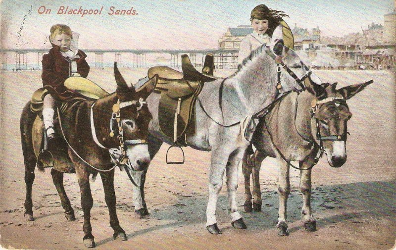 On Blackpool sanz.Children. Horse Old vintage English postcard