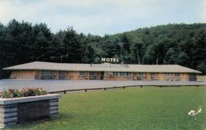 NY - Lake George. Shamrock Motel   (damaged card)