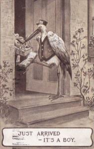 Birth Stork Delivering Baby Just Arrived It's A Boy 1911
