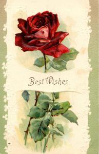 Greetings - Best Wishes