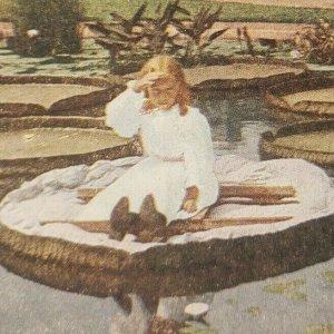 Victoria regina Vida Balsa Niña Sentado Flotando En Estanque Lily Almohadilla