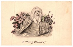 Dog ,  dog in basket with flowers , Merry Christmas