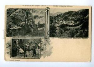 171990 PORTUGAL Ponta Delgada Acores Vintage collage postcard