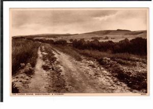 SUSSEX, England, 1900-1910's; The Sussex Downs, Chanctonbury & Cissbury