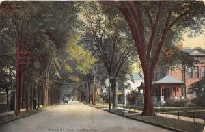 Auburn New York~South Street Looking N~Houses-Powerlines-Trees~Horse Wagon~1910