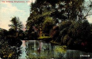 New York Binghamton The Willows 1911