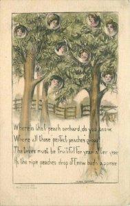 Artist impression C-1910 Farm Orchard Peach Heads Fantasy Postcard 8792