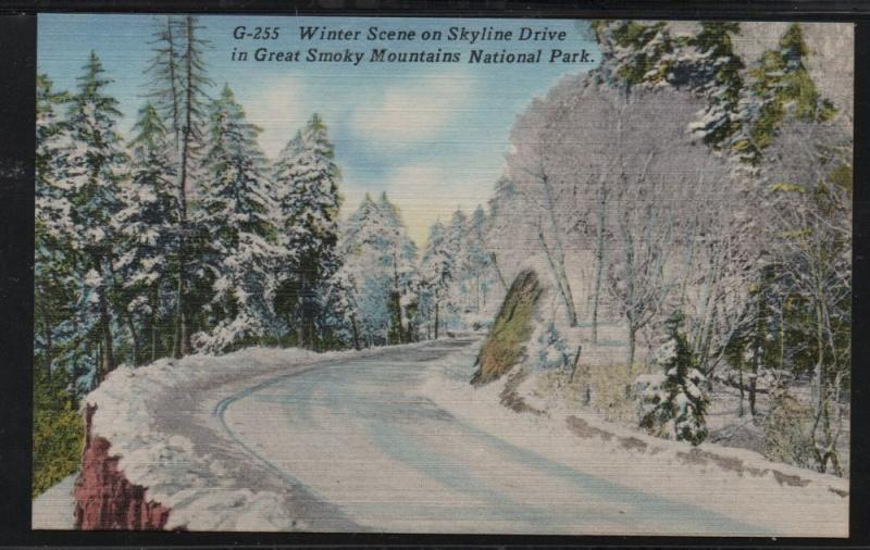Great Smoky Mountains Nat Park Skyline Drive Winter colour PC  unused