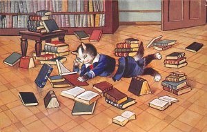 Cat Post Card Reading Books Cat Unused