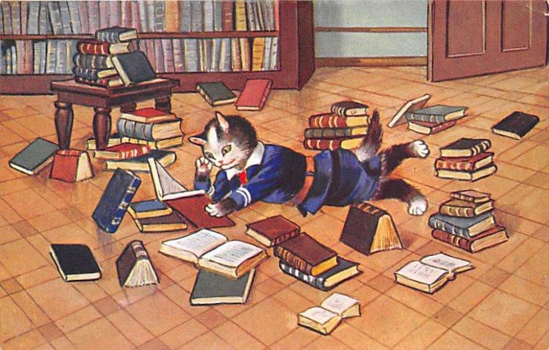 Cat Post Card Reading Books Cat Unused