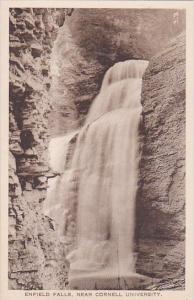 New York Ithaca Enfield Falls Albertype